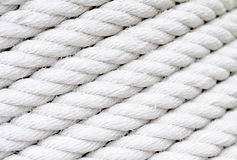 White rope royalty free stock photo