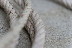 White rope on the dock Stock Photography