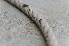 White rope on the dock Stock Photos
