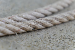 White rope on the dock Royalty Free Stock Image