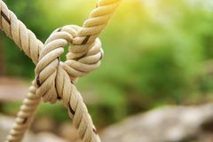 White rope tied in a knot for adventure. Close-up of rope knot line tied together. With bridge background Royalty Free Stock Images