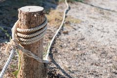 white rope tied with stump to block the areas