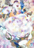 White Rose, abstraction. Imitation of watercolor painting Royalty Free Stock Image