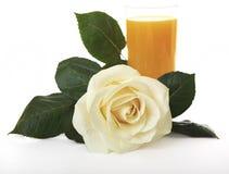 White Rose against orange juice. Stock Image