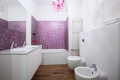 White and rose bathroom interior stock photography