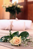 The white rose on a bed. Stock Photos