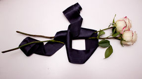 White rose with black ribbon Stock Photography