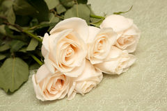 White rose bouquet Royalty Free Stock Photos