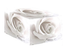 White Rose Box. Designed in Photoshop. Would make a great wedding card or other romantic gift card Stock Image