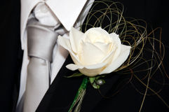 White Rose Buttonhole Royalty Free Stock Photo