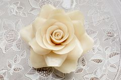 White Rose Candle Royalty Free Stock Images