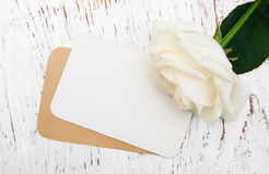 White rose with card Stock Photos