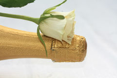 White rose on a champagne bottle stock images