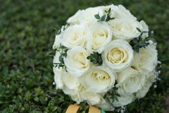 White rose flower bouquet in bundle shape for bridal in wedding. Ceremony on green grass Stock Photography