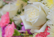 White rose flower in bouquet Stock Photo