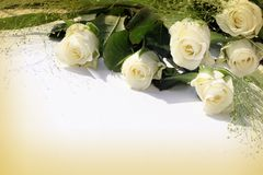 White rose frame. White roses over white background - perfect isolated for your text Royalty Free Stock Photography
