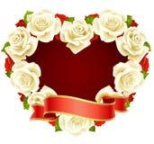 White Rose Frame in the shape of heart. Vector white Rose Frame in the shape of heart Royalty Free Stock Photos