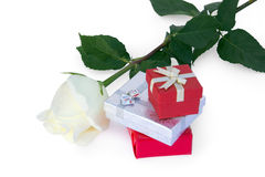 White rose and gifts Stock Photos