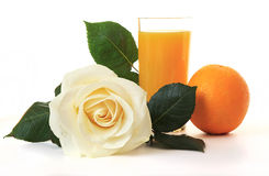White Rose, glass of juice and orange. Royalty Free Stock Photo