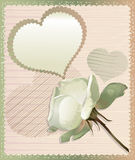 White rose and heart Stock Photo