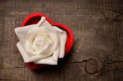 White rose in heart shaped box Royalty Free Stock Photography