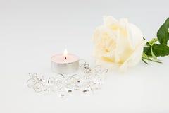 White Rose isolated on white background Stock Image