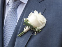 White rose on the lapel of a bridegroom Stock Images