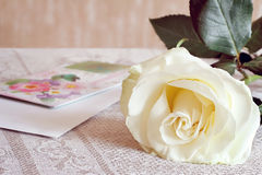 White rose and a letter of congratulation. Royalty Free Stock Photography