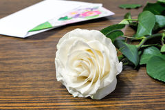 White rose and a letter of congratulation. Royalty Free Stock Photos