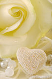 White rose and love heart Stock Photos