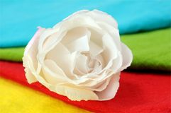 White rose and  napkins Stock Photo