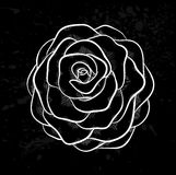 White rose outline with gray spots on a black background. Royalty Free Stock Photo