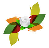 White rose over color leaves illustration design Stock Photos