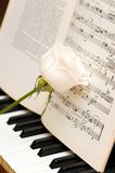 White rose over music sheets and piano keys. White rose over music sheets  and piano keys Stock Photo