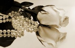 White Rose And Pearls Reflection stock photo