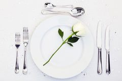 White rose place setting Royalty Free Stock Image