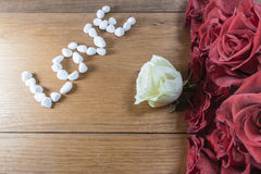 White rose and red roses Royalty Free Stock Photography