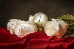White rose on red satin. stock image