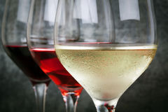 White Rose and Red Wine. Glasses of white, rose and red wine.  Focus on foreground Royalty Free Stock Images