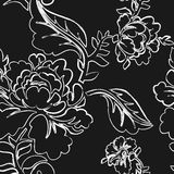 White Rose seamless pattern. Retro floral texture.  Royalty Free Stock Image