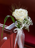 White Rose - Wedding day Stock Photography