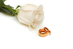White rose and wedding rings isolated on white. White rose and wedding rings  isolated on white Royalty Free Stock Photo