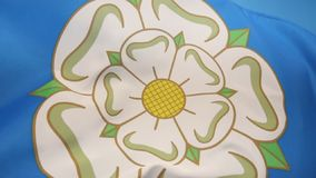 White Rose of Yorkshire - United Kingdom. The flag used to represent Yorkshire is a White Rose of York on a blue background. The design dates from the 1960s stock video footage