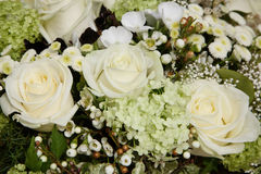White Roses. In wedding bouquet Royalty Free Stock Photography