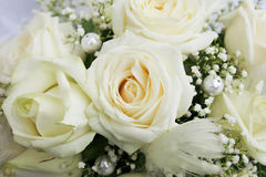 White roses Royalty Free Stock Photos