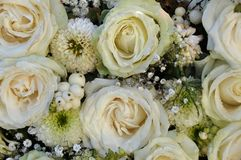 White roses. In a bridal bouquet Stock Photos