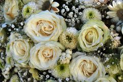 White roses. In a bridal bouquet Royalty Free Stock Image
