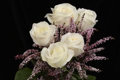 White roses. In with pink filler flowers Stock Photography