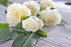 White roses. Bouquet of white roses on the table stock photo