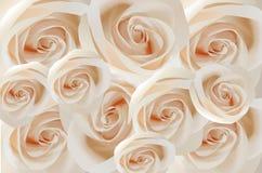 White roses royalty free illustration